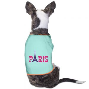 Paris Eiffel Tower Christmas Gifts For Pets